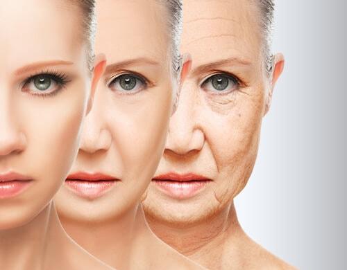 Anti-aging properties