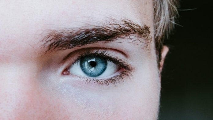 Elevate Your Eyebrow Game With These Tips